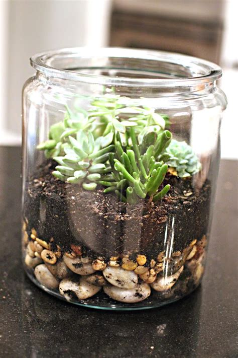 easy diy succulent planters  printable included