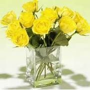 Beautiful yellow roses  32 pics  - Izismile com  Beautiful Pictures Of Yellow Roses