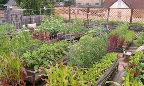 rooftop gardening 20 beautiful and inspiring roof top garden designs and ideas the self sufficient living