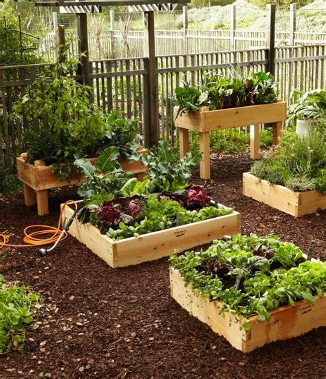 petit ilot de cuisine des bac en bois pour le jardinage