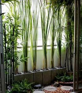 les 25 meilleures idees de la categorie mur vegetal sur With quelles plantes pour jardin zen 3 comment decorer son interieur avec des plantes article