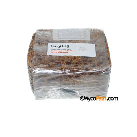 oyster shell flour crushed oyster shell flour 3lbs 3 95 mycopath com mushroom supplies