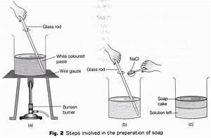 Cbse Class 10 Science Lab Manual - Soap Preparation