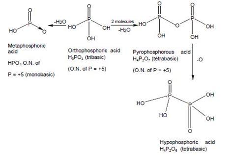 cbse class  chemistry notes  p block elements
