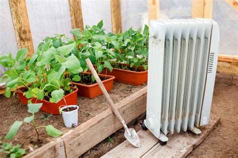 top  tips  heating  greenhouse  winter thompson