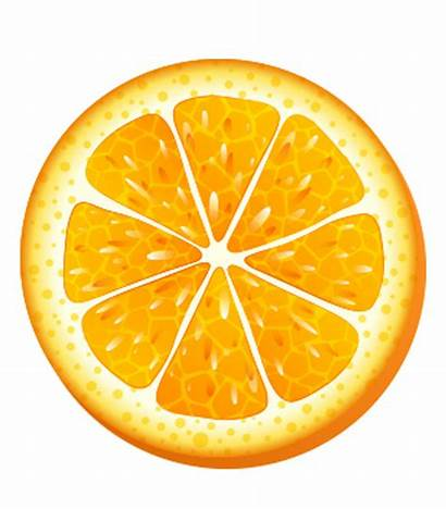 Orange Slice Clipart Searchpng Beer January