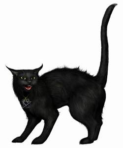 Free Halloween Black Cat Pictures, Download Free Clip Art ...