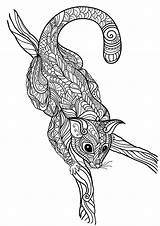 Coloring Pages Opossum Advanced Adults Animal Coloringtop sketch template