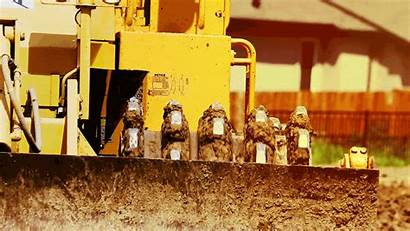 Abalone 1143 Infrastructure Civil Industrial Development Land