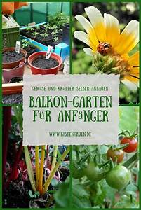 Kompost Für Balkon : 31 besten kompost wurmkisten bilder auf pinterest garten balkon und boden ~ A.2002-acura-tl-radio.info Haus und Dekorationen