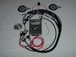Tbi Harness W  Ecm Fuel Injection Wire Harness Sbc Tbi