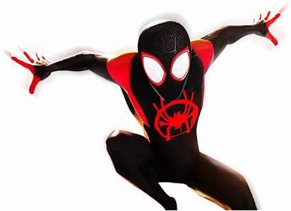 Spider Verse Spiderman Into Spiderverse Dvd Blu