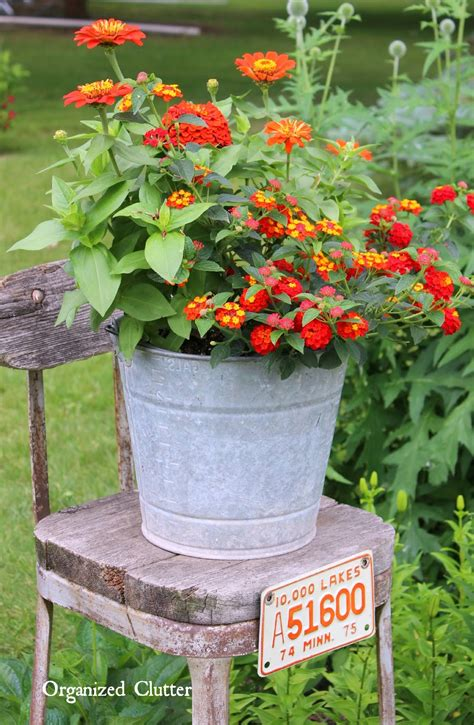 Beautiful Flowers Junky Containers Organized Clutter