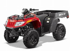 Arctic Cat Atv  U0026 Snowmobile 2005