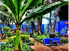 La Casa Azul de Frida Kahlo — Dalia Ceja