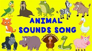 Animals Pictures For Kids With Sounds