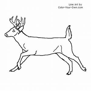 Whitetail Outline New Calendar Template Site