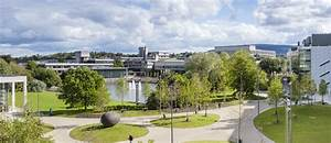 Online courses from University College Dublin