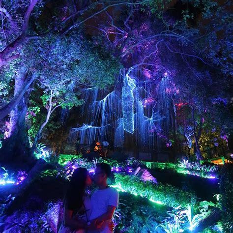 siapkan kameramu yuk liburan malam  avatar secret garden