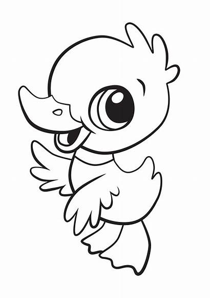 Coloring Pages Educational