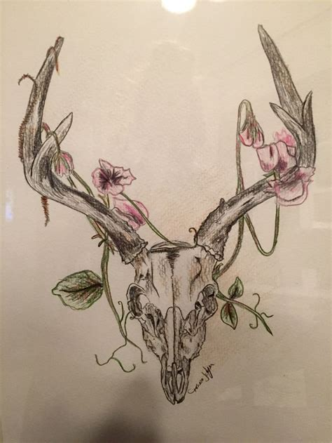 deer skull drawing  homemade projects pinterest