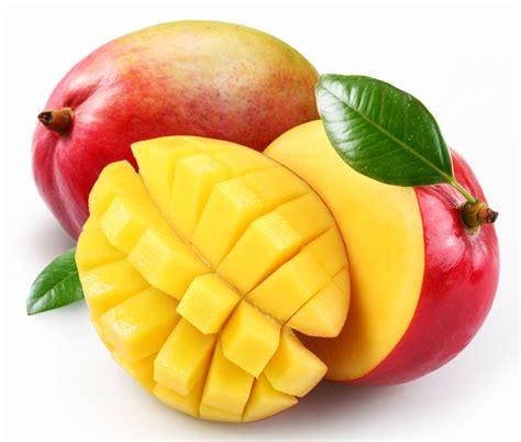 cuisiner le fruit de l arbre à délicieuse mangue la pêche des tropiques pleine vie