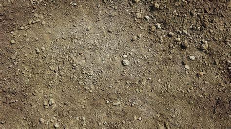 definition  sandy soil referencecom