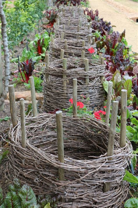 11 Garden Ideas To Steal From South Africa: Gardenista
