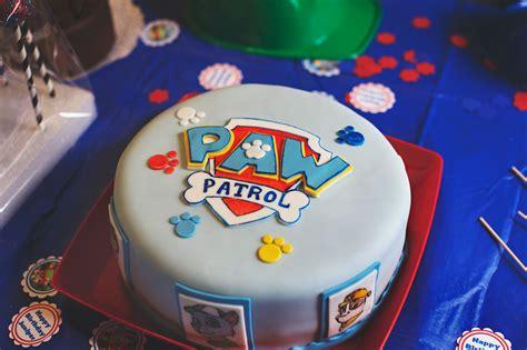 orange county ny child photographer paw patrol birthday
