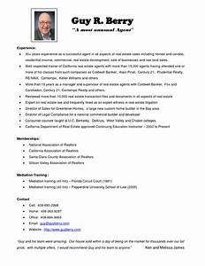 the real estate agent resume examples tips writing With resume template for real estate agents