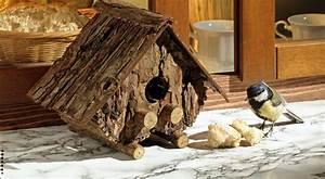 Casetta per uccelli di corteccia Bricoportale: Fai da te e bricolage