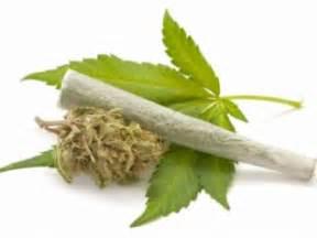 cbd oil marijuana withdrawal