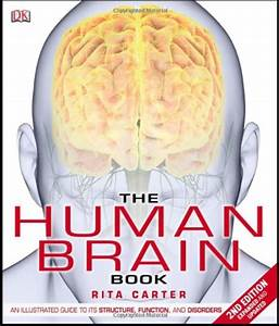 Download The Human Brain Book  An Illustrated Guide To Its