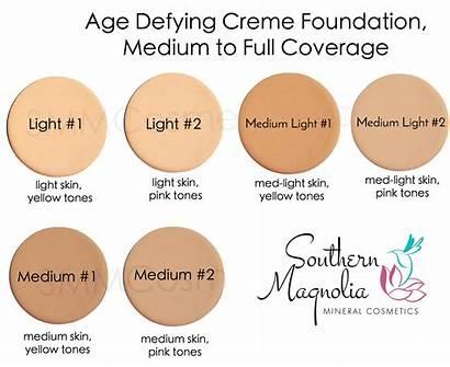 Foundation Chart Skin Tone Colors Skintone Creme