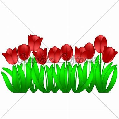 Row Flowers Clipart Spring Clip Tulips Clipartmag