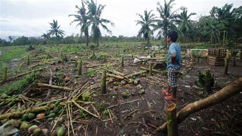 typhoon ulysses damage  agriculture reaches pb da philippines lifestyle news