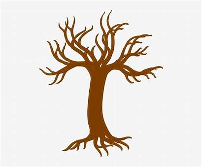 Tree Clipart Trunk Roots Pngkit