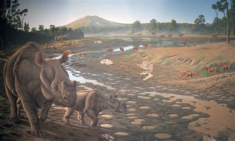 hancock mammal quarry john day fossil beds national