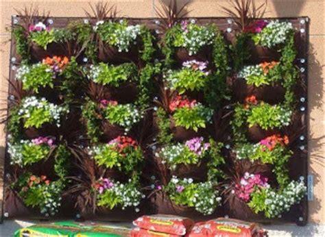 menata bunga  rak bertingkat tanaman