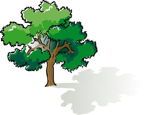 color trees clipart colored oak tree