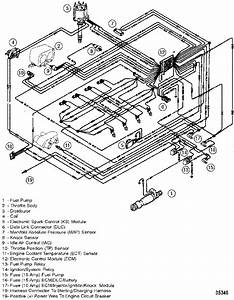 Mercruiser 5 7 Alternator Wiring Diagram