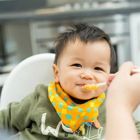 asian baby boy eating blend food   high chair