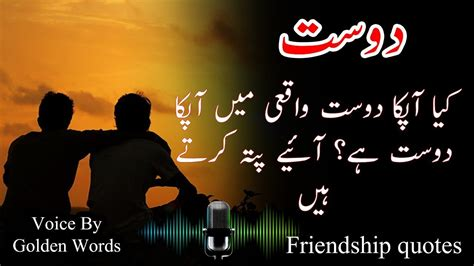 friendship quotes  urdu  hindi