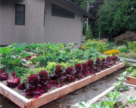 build your own rooftop garden the quick and cheap realclear