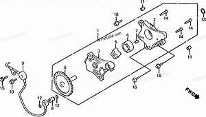 Honda Atv 1985 Oem Parts Diagram For Oil Pump