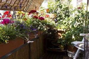 Balkon Im Winter Gestalten : balkon gestalten und bepflanzen die besten ideen mein sch ner garten ~ Markanthonyermac.com Haus und Dekorationen