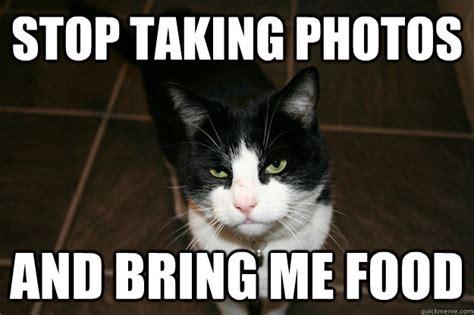 Bring Me Food Meme - stop taking photos and bring me food misc quickmeme