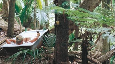 plants for bathrooms nz outdoor baths set a date with nature stuff co nz