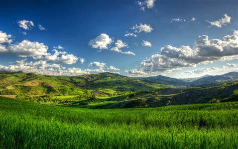 Sunny Green Hills Wallpaper  Nature And Landscape