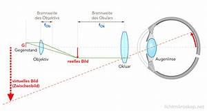 Bildgröße Berechnen Optik : mikroskop strahlengang physik biologie licht ~ Themetempest.com Abrechnung